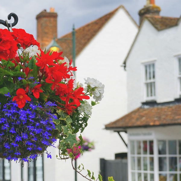 Flowers and a house image.